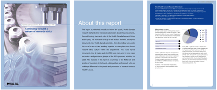 Research Ethics Board annual report